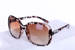 Fashion brown sun glasses Royalty Free Stock Image
