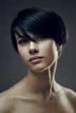 Fashion brunette portrait Stock Photos