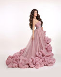 Fashion brunette woman in gorgeous long pink dress posing isolat Stock Image