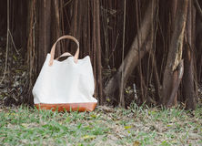 Fashion Canvas Bags with Banyan Tree Royalty Free Stock Photography