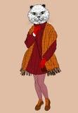 Fashion cat portrait Royalty Free Stock Image