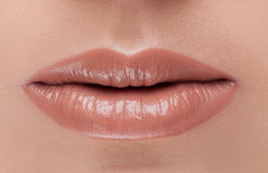 Fashion classic true lips beige Royalty Free Stock Photos