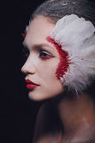 Fashion close-up portrait of a model girl in the image of a swan with a beauty amazing make-up. Royalty Free Stock Photography