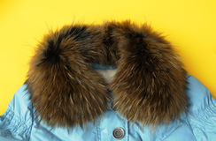 Fashion Cloth with fur collar Stock Photo