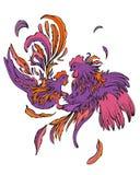 Fashion couple of birds Stock Photo