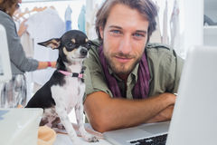 Fashion designer with his chihuahua Stock Image