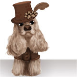 Fashion Dog Royalty Free Stock Photography