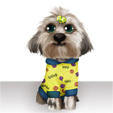 Fashion Dog. Cute dog illustrations used in all kinds of design Stock Photo
