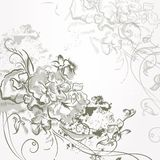 Fashion elegant   background with hand drawn flowers Royalty Free Stock Photography