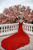 Fashion elegant blond woman model in red gown with long train of Stock Photos