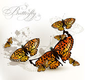Fashion elegant design with  yellow orange butterflies on a whit Royalty Free Stock Image