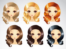 Fashion Evening Curls Hairstyling Set Royalty Free Stock Photography