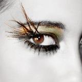 Fashion Eye Royalty Free Stock Photos