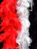 Fashion feathers Stock Photo