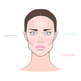 Fashion female makeup charts of blushing, contouring, highlights Stock Photos