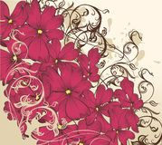 Fashion floral background with flowers Stock Images