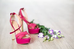 Fashion footwear Stock Photography
