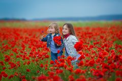 Fashion, freedom, journey, travel, family, friendship concept - in the middle of poppy field there are enchanting little nymphs in royalty free stock photo