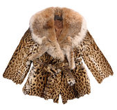 Fashion fur coat Royalty Free Stock Image