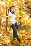 Fashion girl in autumn wood Stock Images