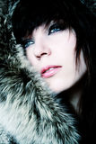 Fashion girl in furs. Portrait Stock Photography