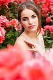 Fashion girl near bush of pink roses Stock Image