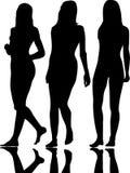 Fashion girls. Black silhouette on white stock illustration