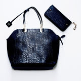 Fashion glamorous ladies bag of crocodile skin Royalty Free Stock Photo