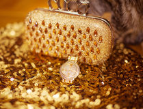 Fashion golden womens accessories. Rich wristwatch and purse, on Royalty Free Stock Photos