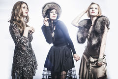 Fashion Group of beautiful young women.  royalty free stock photography