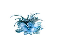 Fashion hair accessories and brooches made of colorful feather o Royalty Free Stock Photography