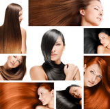 Fashion hairstyle collage Royalty Free Stock Image