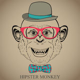 Fashion Hand Drawing Illustration of Monkey in Glasses, Bow Tie and Bowler Hat. Hipster look. Retro vintage style.  Doodle style Royalty Free Stock Photos