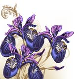Fashion hand drawn flowers in purple color Stock Photos
