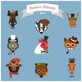 Fashion Hipster Animals set 3 Stock Image
