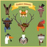 Fashion Hipster Animals set 6 Stock Image