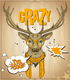 Fashion hipster deer dressed in orange glasses and scarf, telling I am cool, against old vintage paper  backdrop, crazy quote card Royalty Free Stock Photo