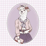 Fashion illustration of alpaca Royalty Free Stock Photo