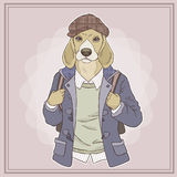Fashion illustration of dog Royalty Free Stock Images