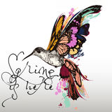 Fashion illustration with hummingbird and colorful butterfly win Stock Photos