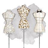 Fashion Illustration - Sketch - Elegant lady Stock Images