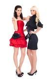 Fashion image of two beautiful women stock image
