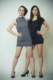 Fashion image of two beautiful young women. Studio fashion image of two beautiful young women Royalty Free Stock Photo