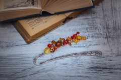 Fashion jewelry, beads, decorations Royalty Free Stock Photo