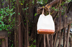 Fashion Leather Bags  hang on banyan branch Stock Photography