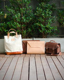 Fashion Leather Bags, Nature Background Stock Image