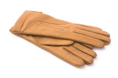 Fashion leather gloves Stock Photos