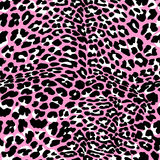 Fashion leopard exotic seamless pattern. Royalty Free Stock Image