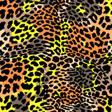 Fashion leopard exotic seamless pattern. Stock Images