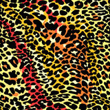 Fashion leopard exotic seamless pattern. Royalty Free Stock Photos